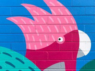 Mural series for Wairoa School Bondi